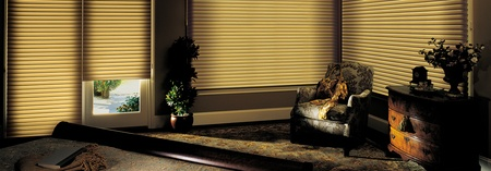 Room Darkening Window Treatments