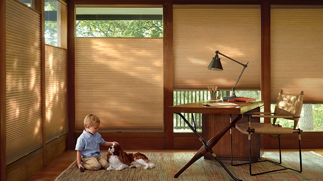 Light Filtering Window Treatments