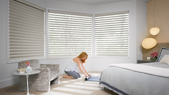 Motorized Window Sheers and Shades