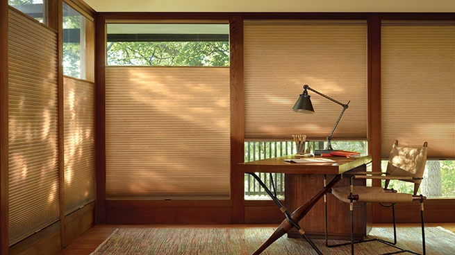 Motorized Honeycomb and Pleated Window Shades