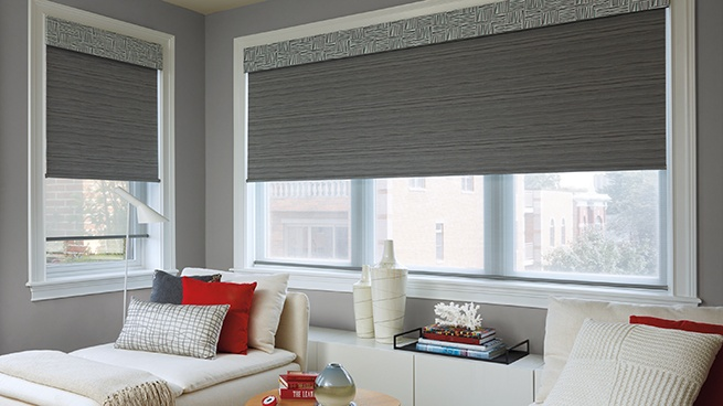 Motorized Roller Window Shades and Screen Window Shades