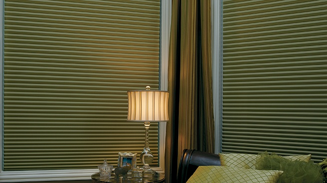 Room Darkening Window Treatment